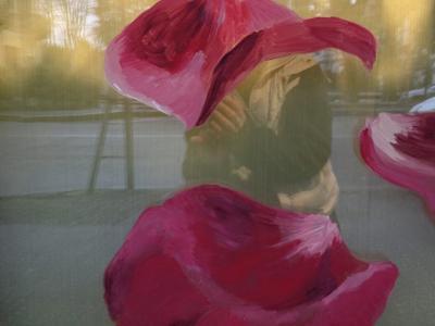 Decorazione vetrine
